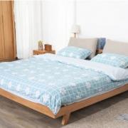 Giường ngủ gỗ tự nhiên thiết kế đẹp GB-9067